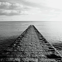 Groyne .... with seagulls (Petur) Tags: seagulls stone square blackwhite groyne blackdiamond blackwhitephotos specialpicture blackdiamondpremier asquaresuperstarstemple