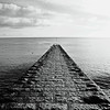 Groyne .... with seagulls (Petur) Tags: seagulls stone square blackwhite groyne blackdiamond blackwhitephotos specialpicture blackdiamondpremier asquaresuperstarstemple