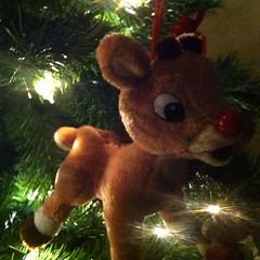 #Rudolph