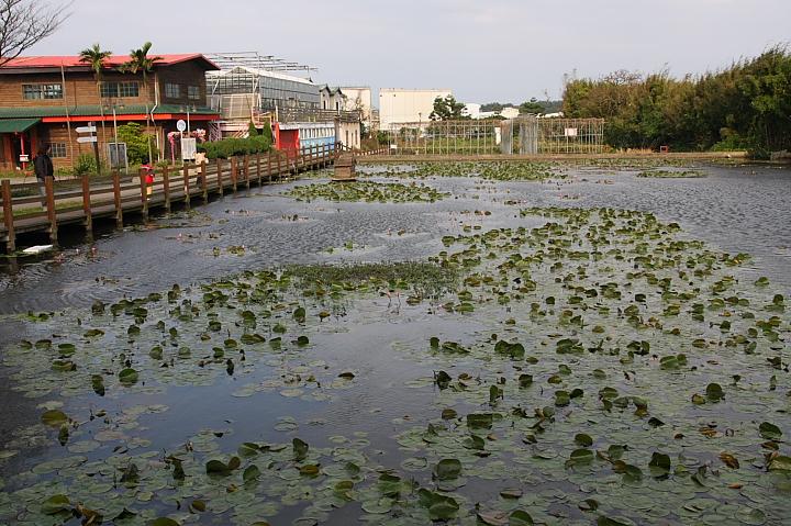 吳厝楊家莊農場(正隆休閒農場)032