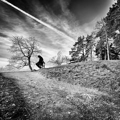 Afterburn.. (Peter Levi) Tags: road blackandwhite bw man tree blancoynegro sweden stockholm hill gravel afterburn absoluteblackandwhite absolutegoldenmasterpiece asquaresuperstarstemple