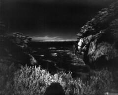 12-27-11-IR2 (Drew Saunders) Tags: california film point ir blackwhite infrared 4x5 lobos aura largeformat efke ir820