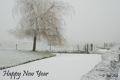 Happy New Year !! (Jan Slob) Tags: winter mist snow tree fog happynewyear ijs ©allrightsreserved