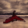 red whale (brookeshaden) Tags: red painterly beach water birds whimsy surrealism whale fineartphotography brookeshaden texturebylesbrumes texturebybrookeshaden