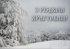 ! (vim2009) Tags: wood blue trees winter sky white snow mountains tree nature clouds landscape ukraine carpathian pentaxk10d zakarpattia