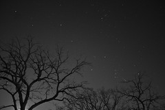 Quiet Miracles (The Cleveland Kid) Tags: longexposure trees wisconsin night stars space nightshots fitchburg starscapes starsinthesky