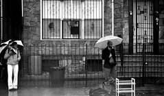 Umbrellas, garbage, rain and waiting... (ThePatronSaint) Tags: nyc people urban bus trash garbage c stop umbrellas jackman rawle 2011