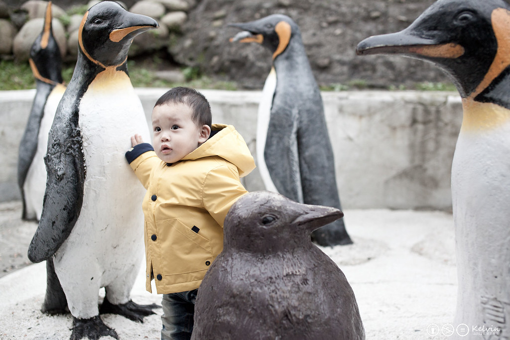 20120115小可樂動物園PAPAGO-15.jpg