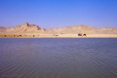 Tuwaiq Mountains (TARIQ-M) Tags: mountains water landscape desert mount camel camels riyadh saudiarabia                ef1635mmf28liiusm canoneos5dmarkii  tuwaiq tuwaiqmountains