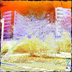 High Rise Entry Interpretation #1 (aeleazer1(Busy,Off/On)!!!) Tags: camera blue light sky orange white black color green art colors yellow mobile upload puddle blog dc washington interestingness interesting day random air picture explore 99 dcist daytime splash vote tagging catchy soe api washdc facebook hypothetical iphone 99percent ipad givemefive metroarea vividimagination twitter colorpicture artdigital kartpostal shockofthenew infinitescroll iphone4 cmwd iphonecamera iphonepicture flickriver iphonography iphoneart awardtree struckbyrainbow trolledproud abokehoflight ipadography aeleazer1 ipadology aeleazer andreeleazer netartii