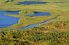 "Flussdelta, Rappadalen, Sarek Nationalpark, Nordschweden • <a style=""font-size:0.8em;"" href=""http://www.flickr.com/photos/73418017@N07/6730123921/"" target=""_blank"">View on Flickr</a>"