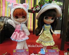 Neo Blythe Dolls Expo