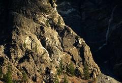 Sunlit Buttress (Dru!) Tags: dykes cliff mountain canada detail rock wall bc britishcolumbia scree geology dyke sedimentary cracked magichour lillooet buttress chilcotin coastmountains missionridge intrusion metamorphic setonlake intruded