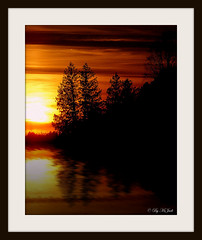 Wisconsin Tree Reflections (**Ms Judi**) Tags: photographybymsjudi msjudi judippc wisconsintreereflections reflections reflection trees water river sun sunset sundown orange yellow beautiful magical godsgift peaceful beauty enchanting love print matted framed