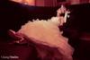 Chang2 Studios-039.jpg (leeann3984) Tags: wedding usa illinois 2011 bubis