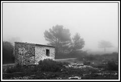 niebla (javi.f. satoca) Tags: blancoynegro alicante javi niebla frio caseta ibi afibi