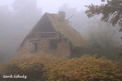 Es war ein mal --- (aries.schulz) Tags: old roof chimney house fog forest nebel alt first haus wald dach schornstein dachziegel witchhouse mystisch roofingtile verfallen hexenhaus roofridge dachbalken purged betagt nordwestmecklenburg palingen