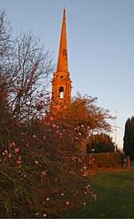 Tardebigge, Worcestershire, St Bartholomew (Tudor Barlow) Tags: winter england blossom spires churches worcestershire listedbuilding parishchurch bromsgrove tardebigge tamron1750 gradeiilistedbuilding tardebiggechurch