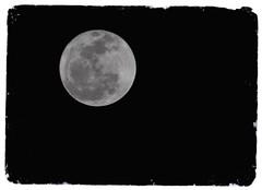 Snow Moon (Greg Foster Photography) Tags: moon night nikon luna full fullmoon nighttime lunar 2012 d90 snowmoon