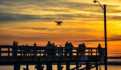 Oblivious ! (Images by Christie  Happy Clicks for 2016!) Tags: seascape canada beach twilight nikon bc dusk crescentbeach goldenhour intruder drone d5200