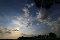 Preparing for sunset (Pascal Volk) Tags: sky sun himmel wolken wideangle wa ww 16mm sonne brandenburg naturepark naturpark superwideangle sww uwa clods weitwinkel swa ultrawideangle havelland uww schutzgebiet protectedarea ultraweitwinkel superweitwinkel canonef1635mmf4lisusm canoneos6d glpe havelaue westhavelland