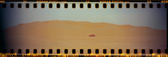 Burbie In Front Of Toothing Dune In Sunset Light (Doha Sam) Tags: sunset panorama belair film 35mm lomography desert suburban kodak scan negative analogue wilderness selfprocessed gmc qatar presskit fatherson c41 portra400 sprocketholes burbie colorneg vuescan epsonv700 southerndesert newportra colorperfect samagnew smashandgrabphotocom linearscan belairx612 toothingdunes