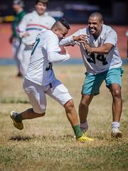 Palmeiras Locomotives (Icaro Limaverde) Tags: brazil sports brasil training football ibirapuera futebol americano treino