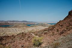5R6K2530 (ATeshima) Tags: arizona nature havasu