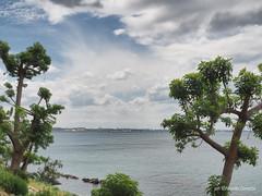 Mar Grande (NIKOZAR (Nicola Zaratta)) Tags: sea sky cloud nuvole lungomare puglia taranto olympusm25f18 olympusem10m2