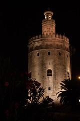 Torre del Oro - Sevilla (gasendi) Tags: espaa canon sevilla spain torre oro eos450d gasendi