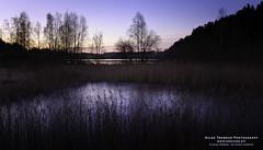 Morning light over stensjvannet (The Autodidact Photographer) Tags: morning autumn trees lake oslo norway sunrise norge morgen vann hst soloppgang trr 2011 stensj stensjvannet