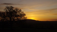 Tree and hill (Sundornvic) Tags: county morning light sky sun silhouette clouds sunrise glow shropshire hills wrekin haighmondhill