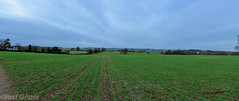 DSCF0132.jpg (Rod Grable) Tags: uk panorama walking landscape countryside preston hertfordshire hitchin ramblers herts charlton x100 englend greatoffley nhrg