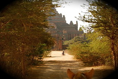 In Bagan, All Roads Lead to a Pagoda (The Spirit of the World) Tags: road horse asia burma religion buddhism myanmar horsecart pagan pagodas bagan