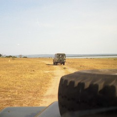 On the road in Murchison Falls National Park, Uganda. The river is the Victoria Nile.