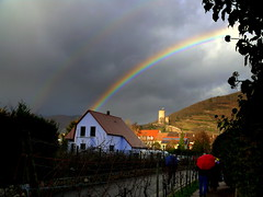 Rainbow In Kayserberg, France (Explored) (Butch Osborne) Tags: travel france castle umbrella rainbow colorful fort explore 1001nights rhineriver kayserberg explored mygearandme tplringexcellence eltringexcellence alsayce rememberthatmomentlevel4 rememberthatmomentlevel1 rememberthatmomentlevel2 rememberthatmomentlevel3 rememberthatmomentlevel5 rememberthatmomentlevel6 vigilantphotographersunite vpu2 vpu3 vpu4 vpu5