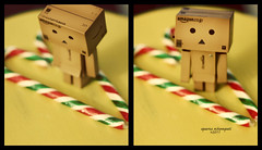 What is the meaning of Christmas? (aebphoto) Tags: christmas red white holiday cute green love yellow canon holidays candy heart sweet stripes confused striped christmastime candycanes danbo canon50mm niftyfifty danboard rebelxsi rebel450d 10daystochristmas danbolove revoltechdanbo yotsubadanbo