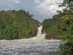 Murchison Falls from the boat (ugandawildlife) Tags: wildlife uganda uwa