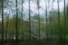 different trains (nosha) Tags: usa tree green beauty nj lightroom oceangrove 50mmf18 2011 nosha nikond300