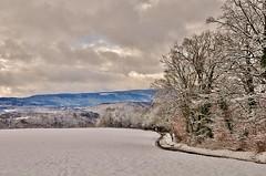 ~~L'hiver Franc Comtois~~ (Jolisa) Tags: wood winter sky nature landscape nikon camino hiver ciel cielo neige paysage sentier franchecomt chemin fort sendero doubs croquenature