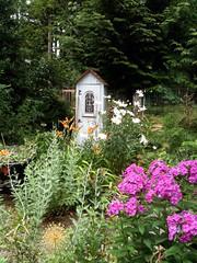Cottage Garden (daryl_mitchell) Tags: summer canada flower garden britishcolumbia winery vancouverisland bluemoon 2011