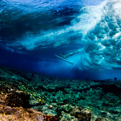 (SARA LEE) Tags: woman fish texture girl square hawaii surf underwater surfer bigisland reef kona breakingwave shortboard humuhumunukunukuapuaa yellowtang waterhousing sarahlee odina vivantvie dalekobetich alisonteal