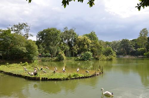 Negara Zoo Lake ©  Still ePsiLoN