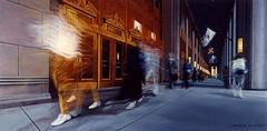 Chicago 13, Civic Opera House, acryl on canvas, 24x48 inch, Takeshi Yamada (Takeshi Yamada (Paintings)) Tags: portrait sculpture chicago newyork sexy celebrity art fashion japan brooklyn painting coneyisland tokyo artist dragon dinosaur georgebush gothic goth victorian taxidermy vogue cnn bikini freak bbc playboy osaka oddities genius mermaid salvadordali michelangelo paranormal billclinton mythology rembrandt pbs ronaldreagan jackalope globalwarming claudemonet waltdisney cabinetofcuriosities kunstkammer zoology pablopicasso jacksonpollock wunderkammer vincentvangogh cryptozoology alberteinstein pierreaugusterenoir barackobama rushlimbaugh stevenspielberg leonardodavinci circussideshow fijimermaid cryptid michaelbloomberg superrealism peterpaulrubens seanhannity globalcooling raffaellosanzio michaelsavage takeshiyamada museumofworldwonders visualanthropology globalclimatechange roguetaxidermy searabbit marklevin