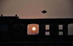 Kite Flying On a Rooftop at Sunset in Mandawa, India (Crumblin Down) Tags: india house home hotel asia paint fort district painted walls hindu fresco jaipur hindi rajasthan haveli fatehpur mansions frescos frescoes mandawa ramgarh jhunjhunu shekhawati mundawa fatehpurramga