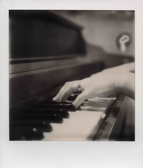 Pianist (Caleb Jenkins) Tags: lighting old light blackandwhite bw music white black film vintage silver project keys polaroid sx70 blackwhite hands hand piano ivory ring nostalgia musical shade instrument instant pianist notdigital instrumental pianokeys impossible polaroidsx70 px100 instantgratification instantfilm playingpiano searsspecial silvershade impossibleproject impossiblefilm