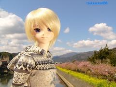 真希波マリイラストリアス (tsukasatan696) Tags: toy doll outdoor figure dollfie shizuoka kawazu dollfiedream makinamimariillustrious marimakinami