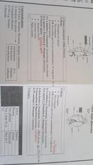20012012101 (Dr.B@sem) Tags: علمي أيمن للدكتور الفارما