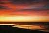 early morning jogger (lomokev) Tags: morning pink red sea sky orange cloud beach sunrise brighton fuji mju superia olympus 400 runner fujisuperia fujisuperia400 xtra fujicolor olympusmju olympusmjuii fujicolorsuperia400 deletetag fujicolorsuperia olympusmju2 posted:to=tumblr roll:name=120119olympusmjuiisuperia400 file:name=120119olympusmjuiisuperia40032