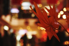 Sometimes in our confusion, we see not the world as it is, but the world though eyes blurred by the mind. (Bhavna Sayana) Tags: red mall moments time bokeh delhi january dream surreal saket 2012 selectcity